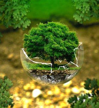 Consulenza tecnico legale ed amministrativa settore ecologia